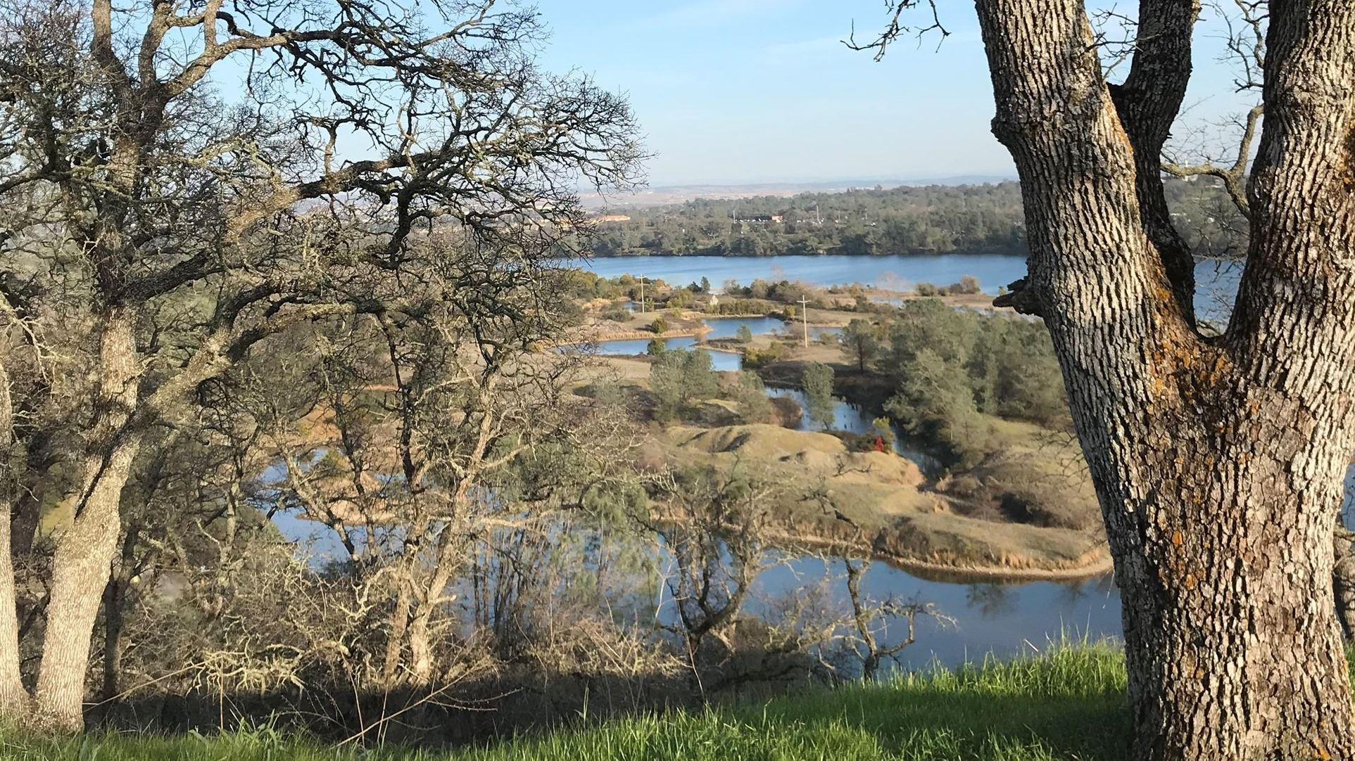 Overlooking Lake Natoma