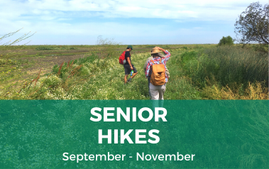 Senior Hikes Fall