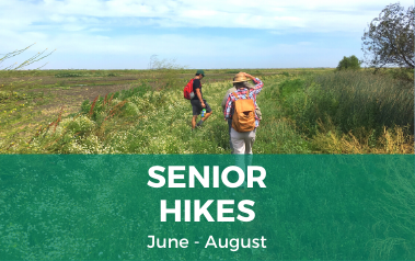 Senior Hikes Summer